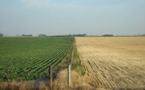 Prórroga para el censo agropecuario en la zona