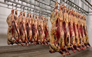 Por el coronavirus, la producción de carne cayó un 50%…