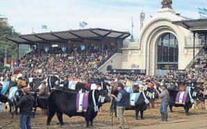 Protesta vegana en La Rural terminó con heridos