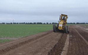 Agropecuarios: Salió la Declaración Jurada de Movilidad para poder circular