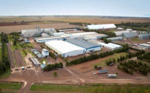 Empresa cordobesa es la primera en exportar maní en tren