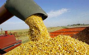 Córdoba, en el podio de las provincias productoras de granos