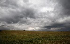 La lluvia dio un saldo positivo para el campo