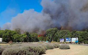 Incendio en Villa Gesell: 50 hectáreas afectadas por el fuego