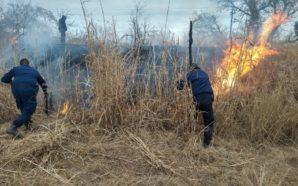 Incendio en pastizales sobre ruta 19