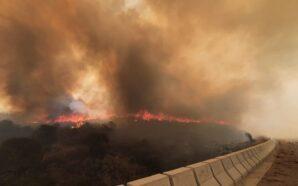 Córdoba: Hay incendios en cuatro puntos de la provincia
