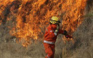 Incendios en Carlos Paz: le robaron a los bomberos voluntarios