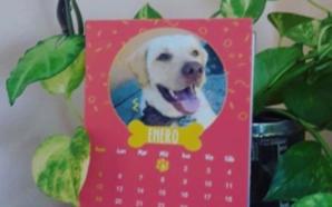 Se viene el calendario 2021 de «Huellitas de la Villa»…