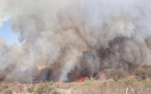 Todos los incendios de la provincia están controlados y en…