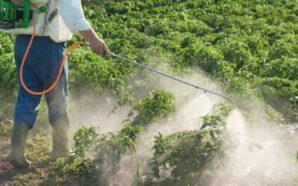 Santiago Temple adhirió a la Ley Provincial de Agroquímicos